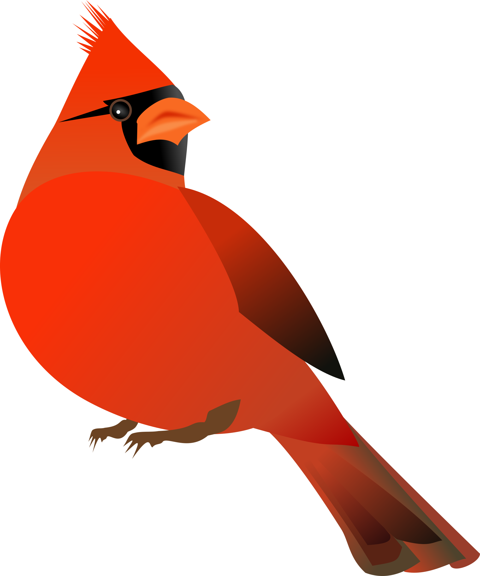 Red Cardinal by kattekrab