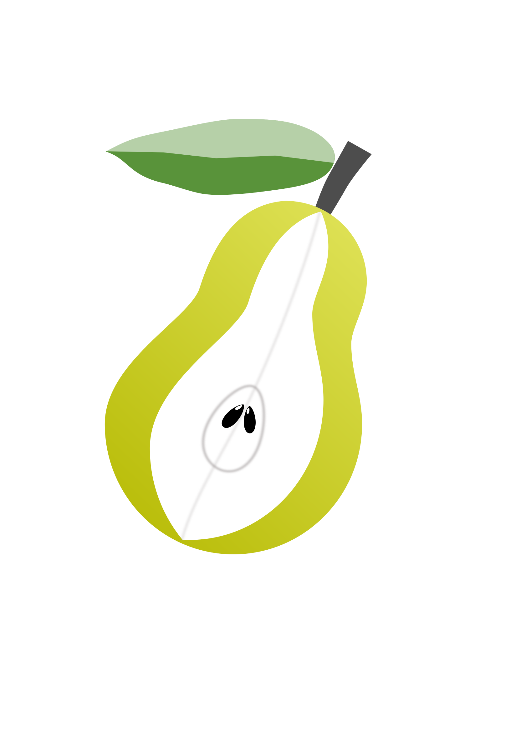 Pear fruit by VasanthKaje