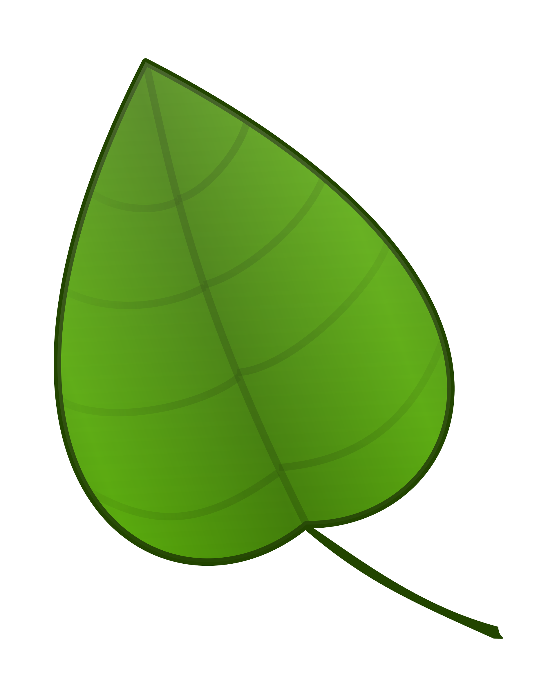 Leaf by carlitos