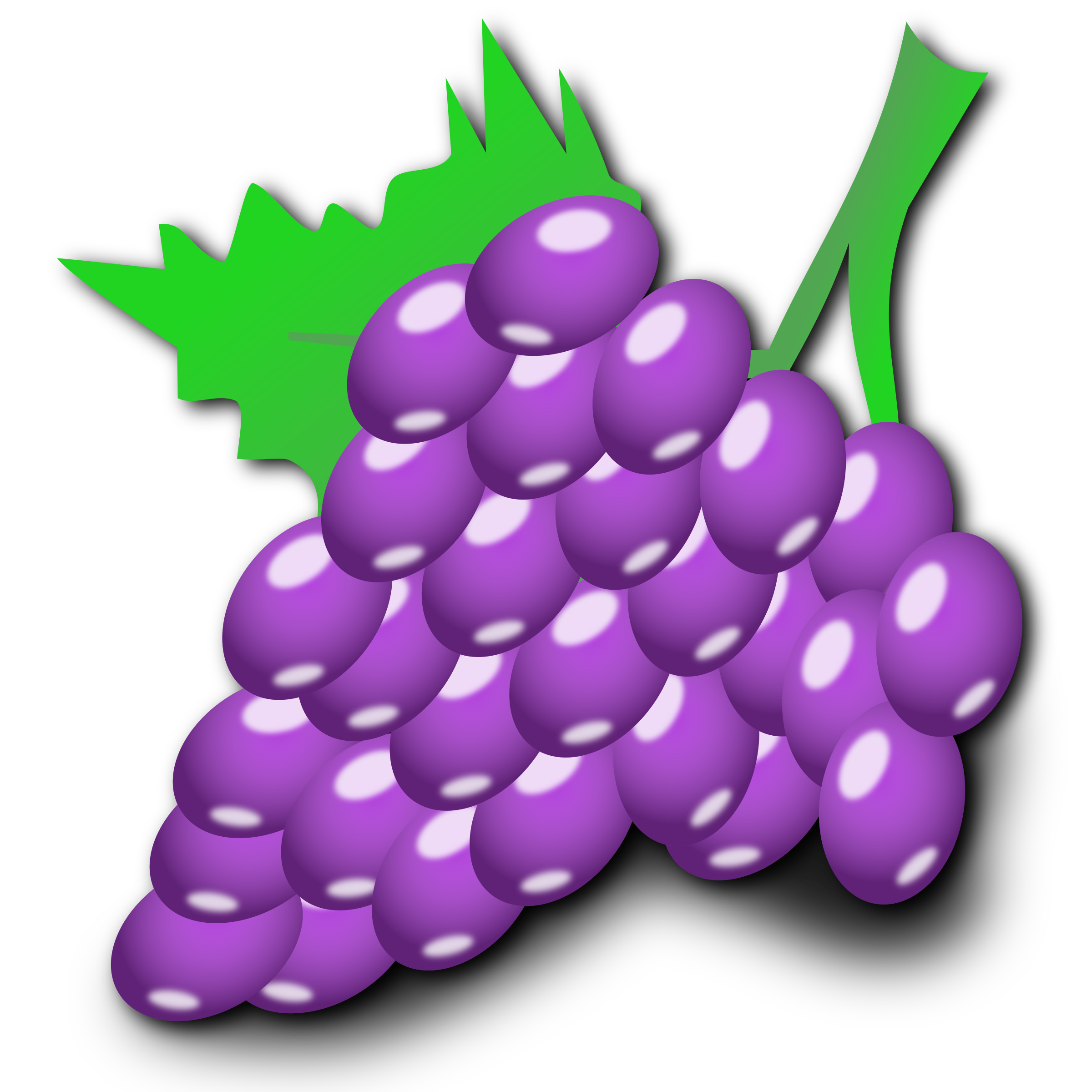 Grapes by nicubunu