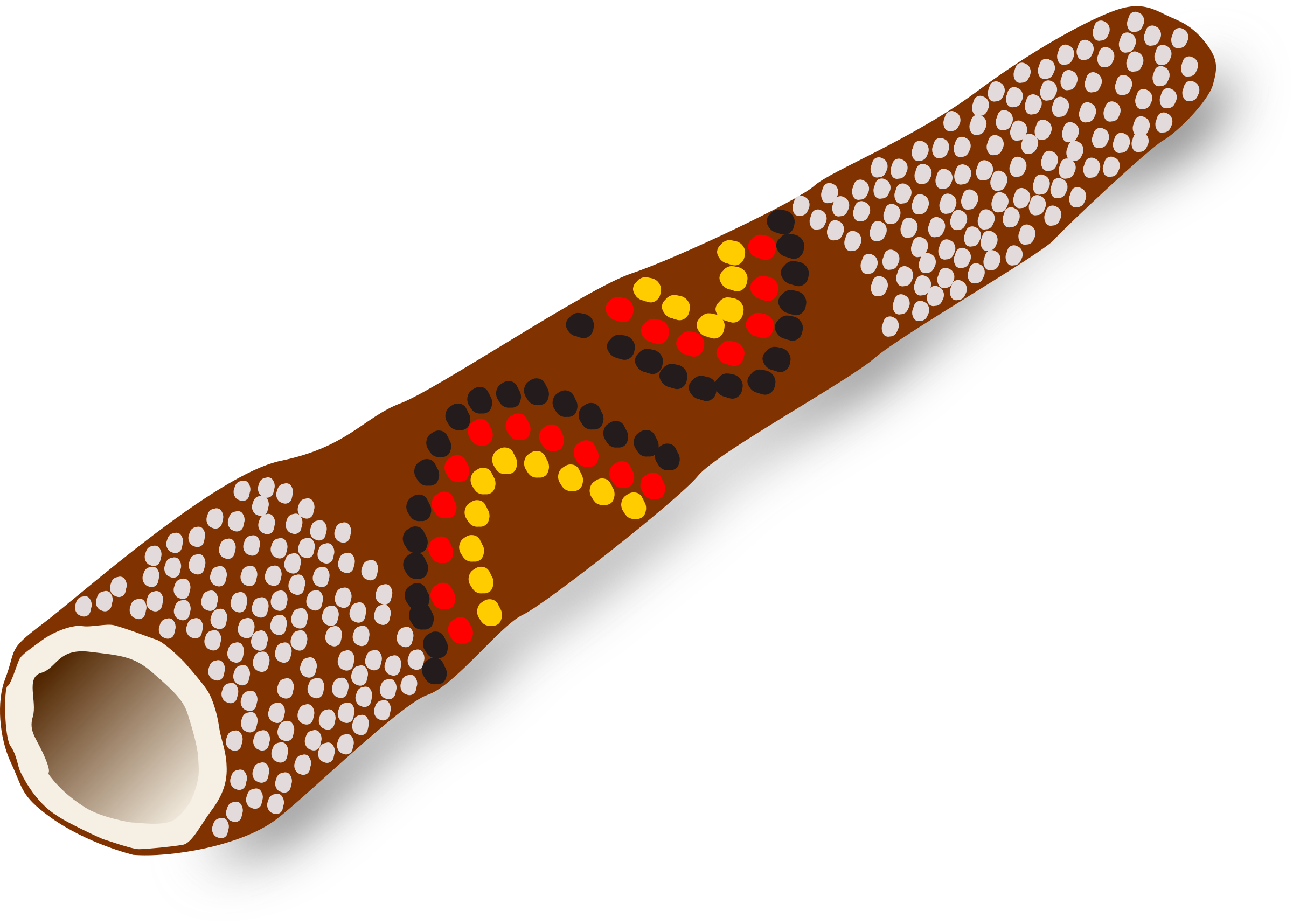 Didgeridoo, Australian traditional music instrument by palomaironique