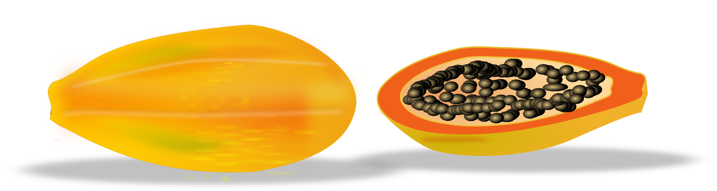 papaya sliced by netalloy