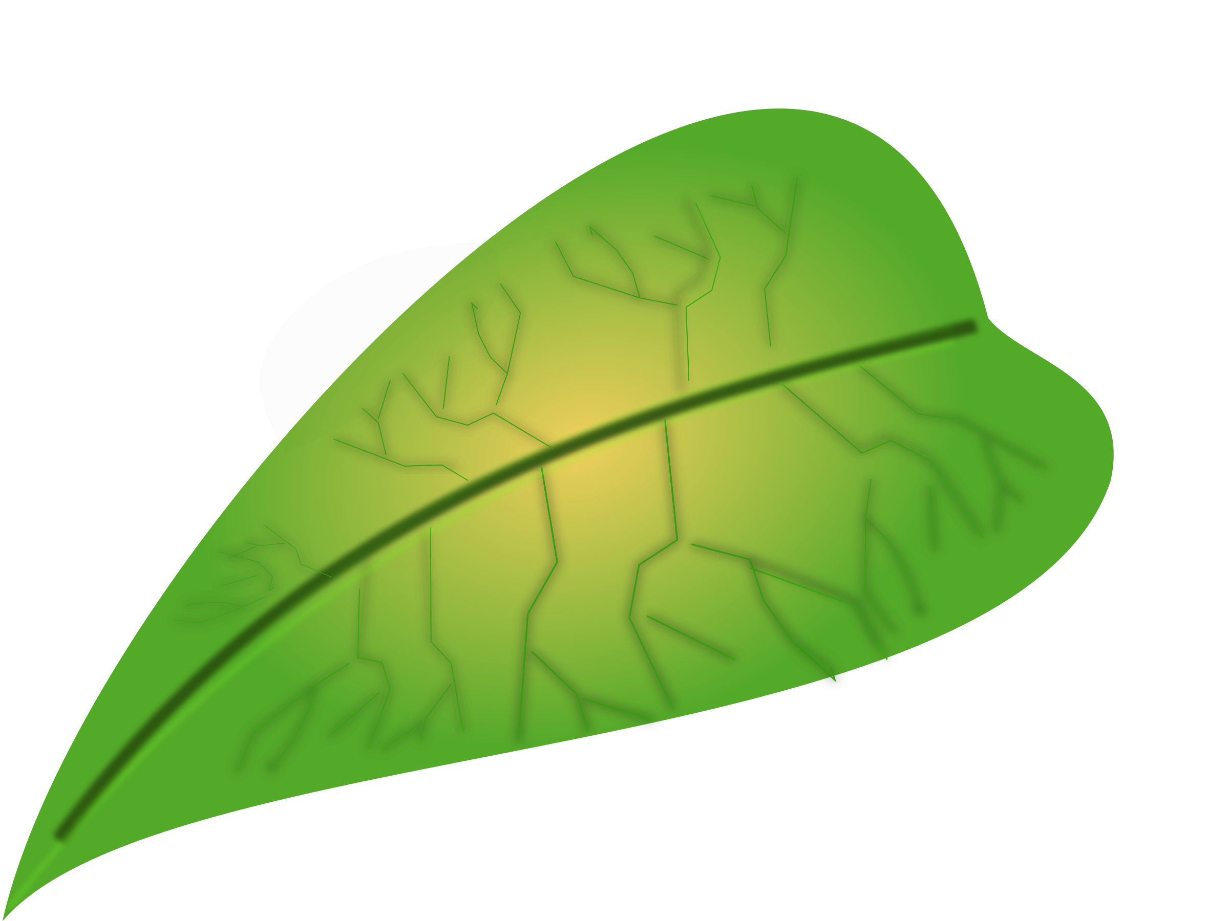 Clipart - green leaf
