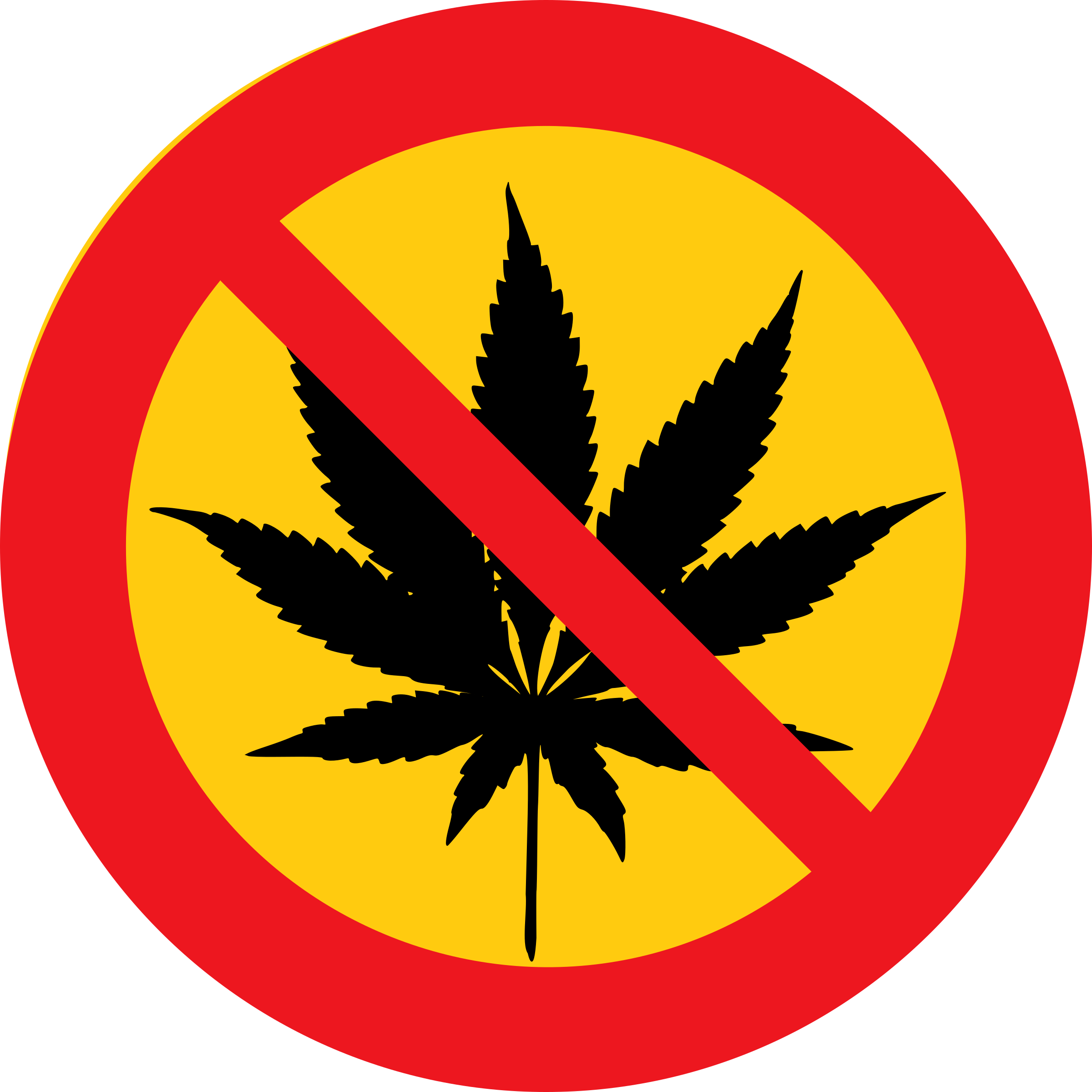 No cannabis by dominiquechappard