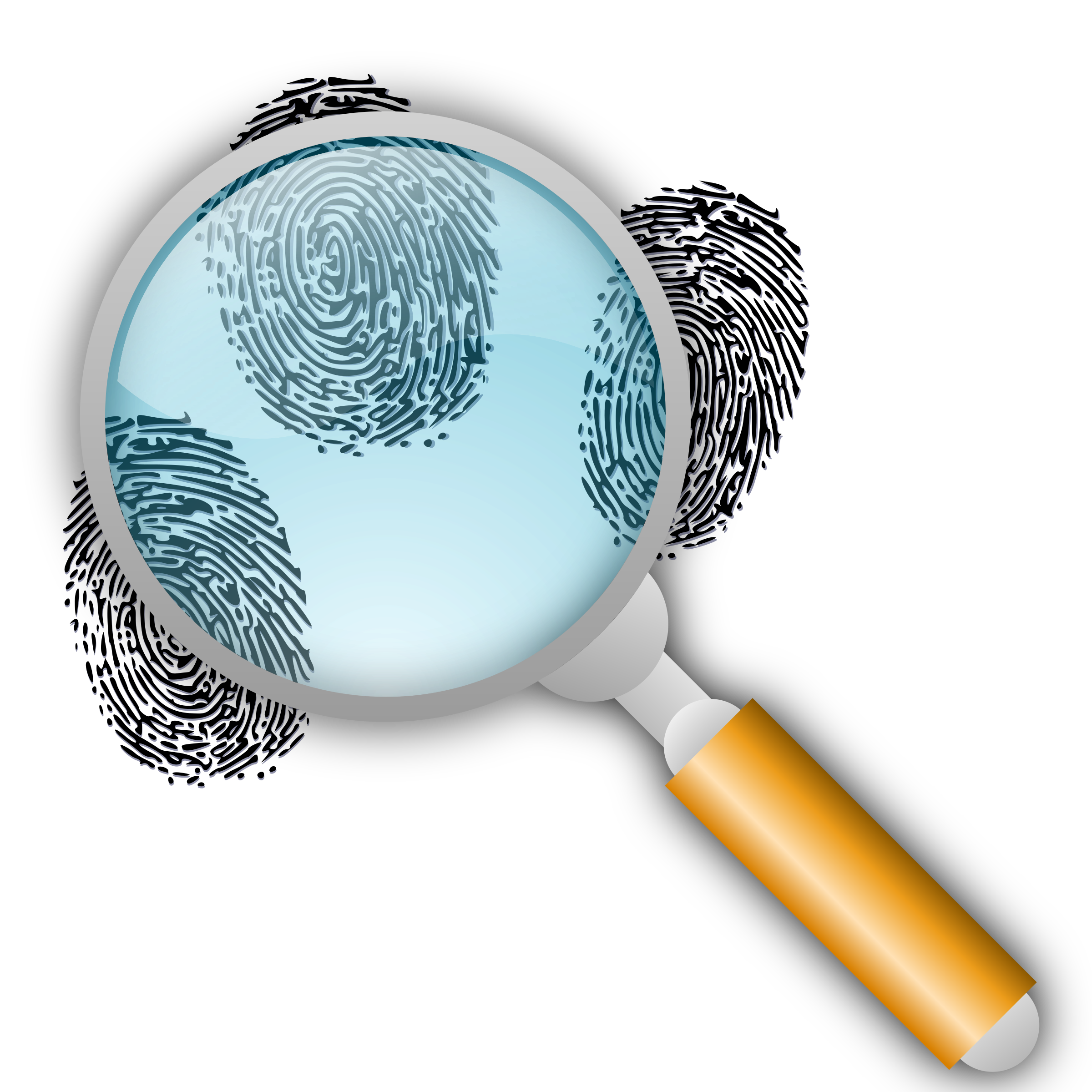 Fingerprint Search with Slight Magnification by eady
