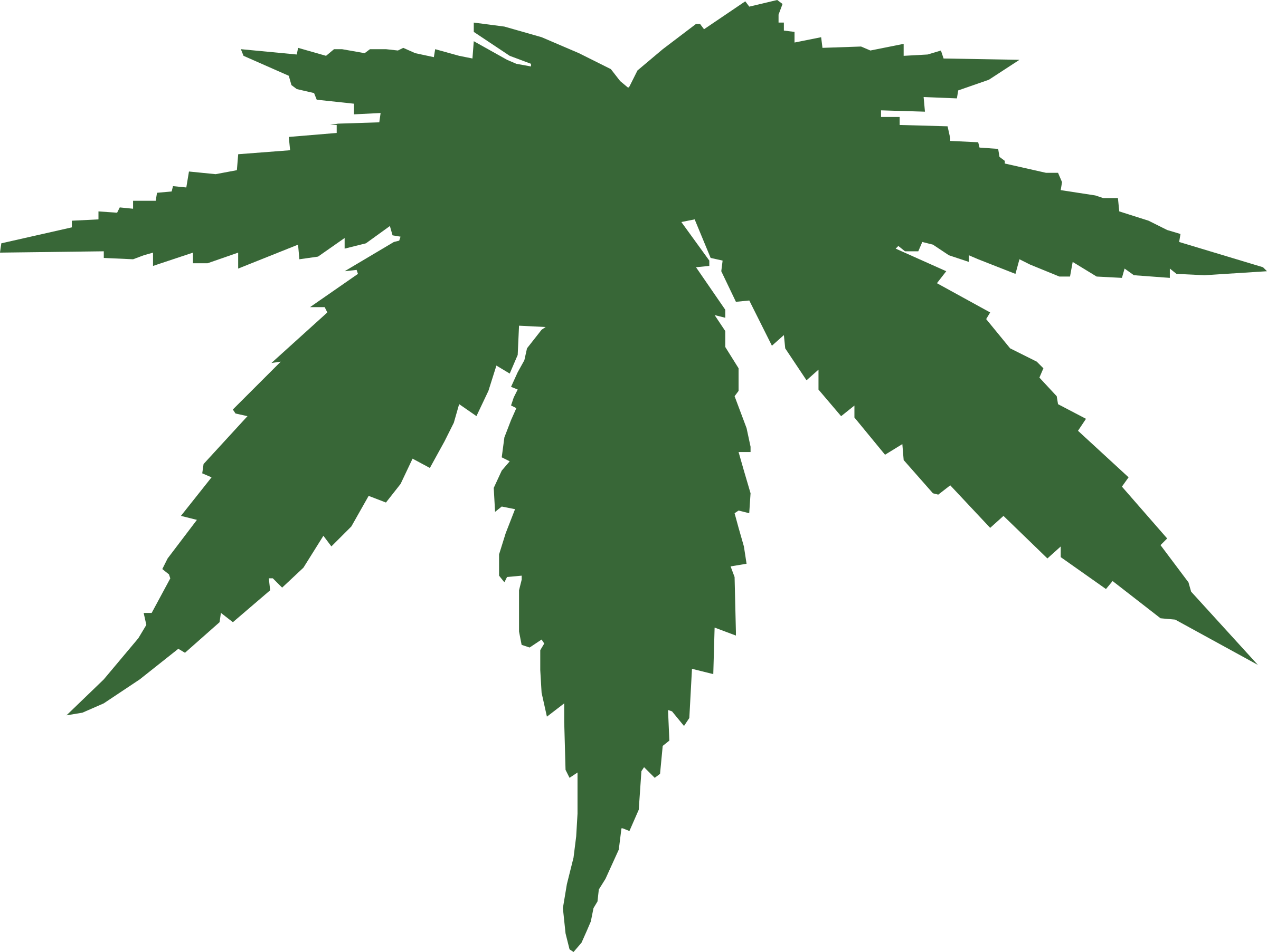 cannabis leaf by Anonymous