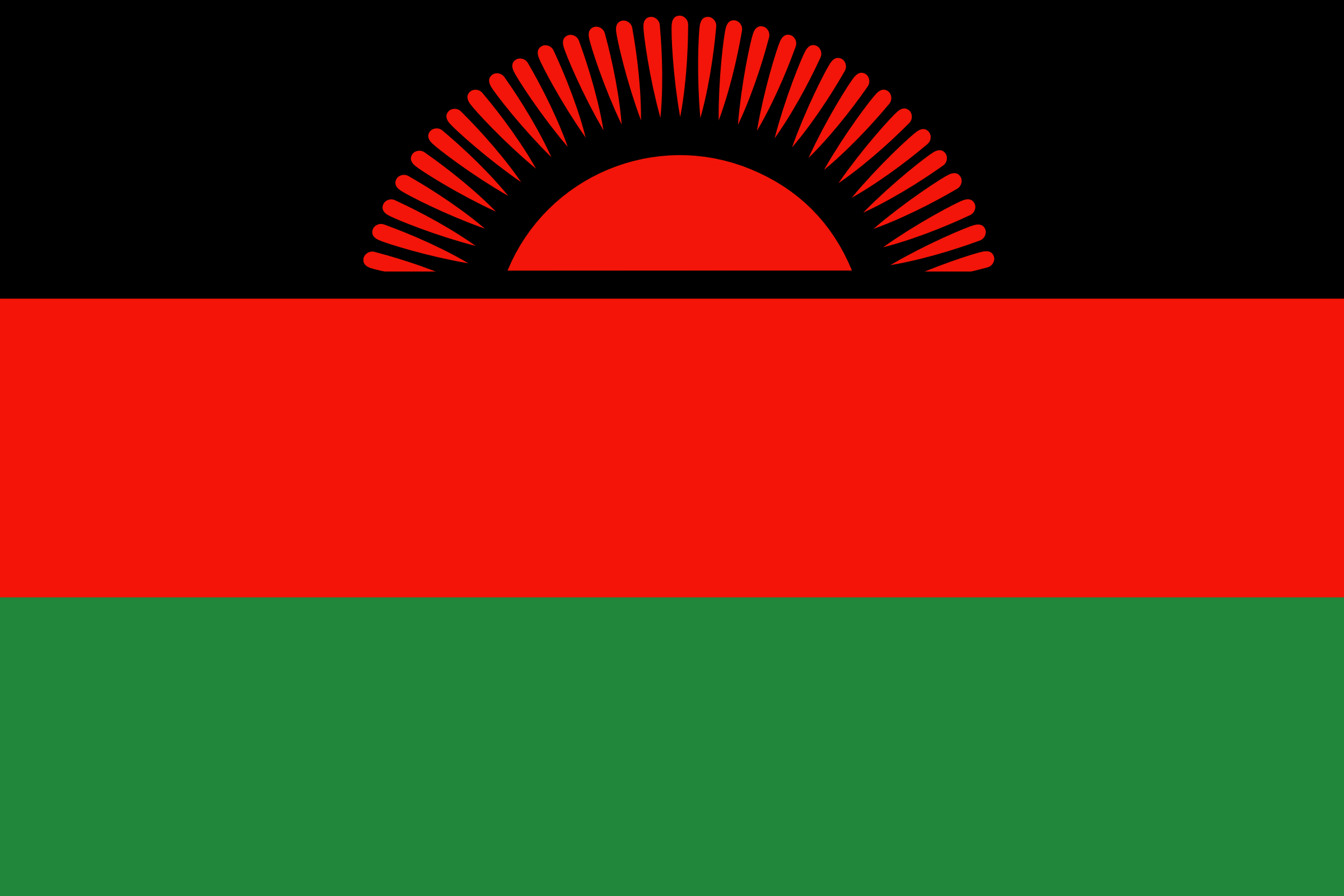 Flag of Malawi by Anonymous
