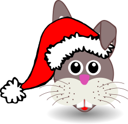 Funny bunny face with Santa Claus hat by palomaironique - Funny bunny face with Santa Claus hat - Dr�le de museau de lapin avec bonnet du P�re No�l - Lustige Hase Gesicht mit Weihnachtsmann Hut - Musetto di coniglietto divertente con berretto del Babbo Natale (partially remixed from
