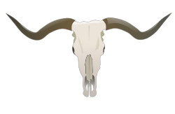 Longhorn Skull by gnokii -