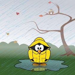 11 november singing in the rain