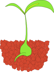 Seedling by zizee - A simple depiction of a seedling sprouting out of some dirt.