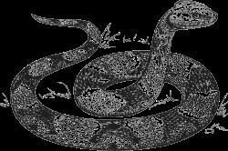 Люди рожденные в год Змеи (2013.
