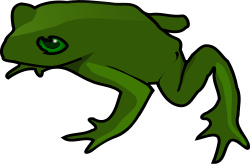 frog by TheresaKnott - A very simple drawing of a frog, with a couple of highlights and shadow.