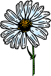 colored daisy 1 by pitr -