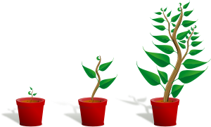 Plant_002_Growing.png (299×182)