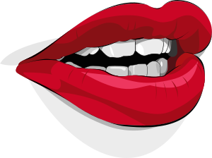 http://openclipart.org/image/300px/svg_to_png/17424/xeolhades_mouth.png