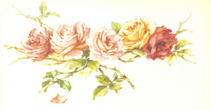 https://openclipart.org/image/300px/svg_to_png/228414/Rose5.png
