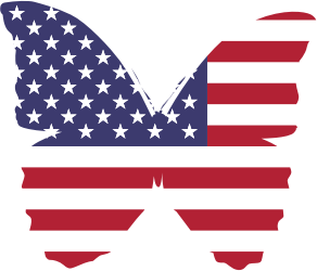 https://openclipart.org/image/300px/svg_to_png/228933/American-Butterfly.png
