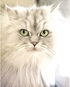 https://openclipart.org/image/300px/svg_to_png/230125/Cat-Portrait-Painting.png