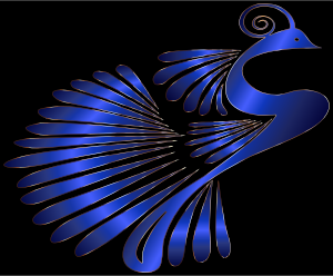 https://openclipart.org/image/300px/svg_to_png/230649/Colorful-Stylized-Peacock-20.png