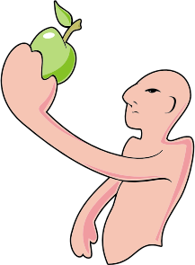 https://openclipart.org/image/300px/svg_to_png/231057/Bald-Man-And-The-Apple.png