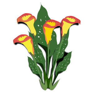https://openclipart.org/image/300px/svg_to_png/231605/flower_21.png