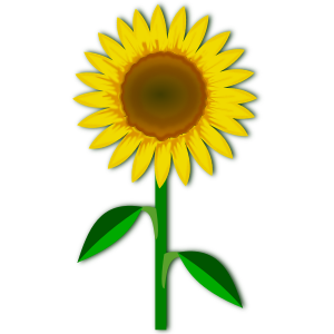 https://openclipart.org/image/300px/svg_to_png/231705/flower_22.png