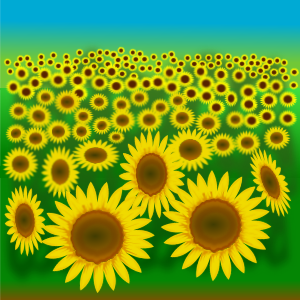 https://openclipart.org/image/300px/svg_to_png/231706/flower_22a.png