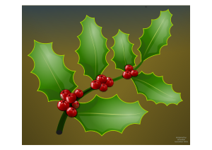 https://openclipart.org/image/300px/svg_to_png/232098/holly_branch.png