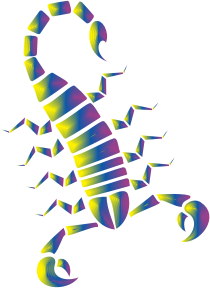 https://openclipart.org/image/300px/svg_to_png/232183/Colorful-Abstract-Tribal-Scorpion-9.png