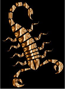 https://openclipart.org/image/300px/svg_to_png/232186/Colorful-Abstract-Tribal-Scorpion-12.png