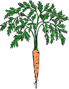 https://openclipart.org/image/300px/svg_to_png/232227/orange_carrot.png