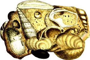 https://openclipart.org/image/300px/svg_to_png/233112/CalcareousSandstone.png