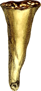 https://openclipart.org/image/300px/svg_to_png/233115/Stalactite.png