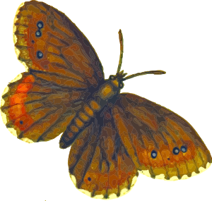 https://openclipart.org/image/300px/svg_to_png/233371/Butterfly.png