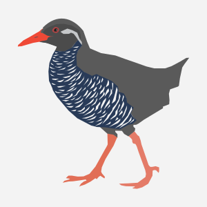 https://openclipart.org/image/300px/svg_to_png/233413/Okinawa-rail.png