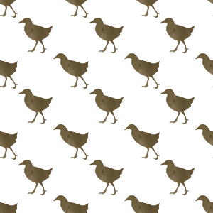 https://openclipart.org/image/300px/svg_to_png/233419/Okinawa-rail-seamless-pattern.png