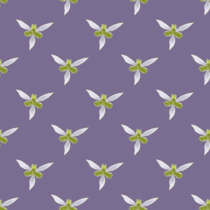 https://openclipart.org/image/300px/svg_to_png/233482/orchid-seamless-pattern.png