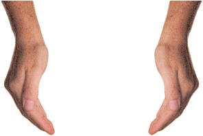 https://openclipart.org/image/300px/svg_to_png/233898/Cupping-Hands.png