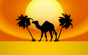 https://openclipart.org/image/300px/svg_to_png/233916/Camel-Sunset.png