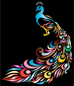 https://openclipart.org/image/300px/svg_to_png/234330/Chromatic-Peacock-2.png