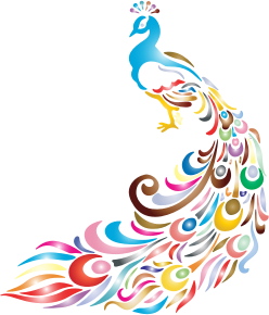 https://openclipart.org/image/300px/svg_to_png/234331/Chromatic-Peacock-2-No-Background.png