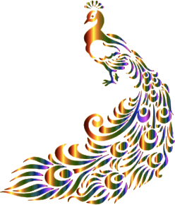 https://openclipart.org/image/300px/svg_to_png/234341/Chromatic-Peacock-7-No-Background.png