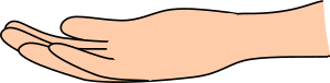 https://openclipart.org/image/300px/svg_to_png/234358/caucasian-right-hand.png