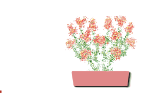 https://openclipart.org/image/300px/svg_to_png/234560/Festive-Flowers-2015121922.png