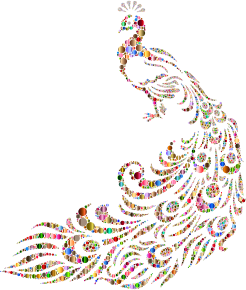 https://openclipart.org/image/300px/svg_to_png/234574/Colorful-Peacock-Circles-2.png