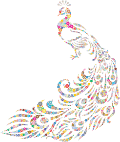 https://openclipart.org/image/300px/svg_to_png/234576/Colorful-Peacock-Circles-3.png