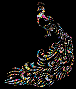https://openclipart.org/image/300px/svg_to_png/234577/Colorful-Peacock-Circles-3-With-Background.png