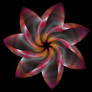 https://openclipart.org/image/300px/svg_to_png/234789/Prismatic-Flower-Line-Art-4.png