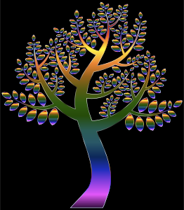 https://openclipart.org/image/300px/svg_to_png/234870/Simple-Prismatic-Tree-5.png